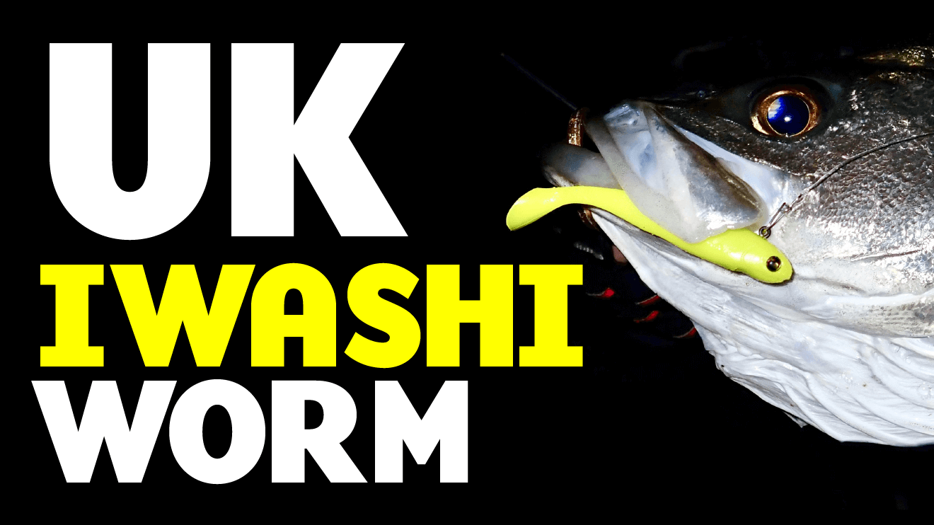 UK IWASHI WORM